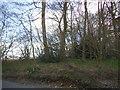 SU9399 : Lott's Wood, Hyde Heath by David Howard