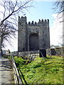 R4561 : Bunratty Castle by PAUL FARMER