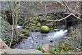 ST1191 : Confluence, Nant Cwm-parc by M J Roscoe