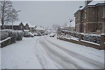 TQ5842 : Doric Avenue by N Chadwick