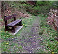 SO1803 : Wooden bench near a river bridge, Cwm by Jaggery