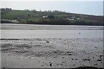 SX9272 : Teign estuary by N Chadwick