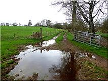H5371 : Water-logged lane, Drumduff by Kenneth  Allen