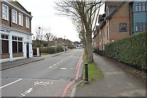 TQ2463 : Anne Boleyn's Walk by N Chadwick
