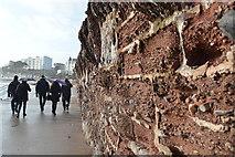 SX9063 : Sea wall, Torre Sands Beach by N Chadwick