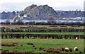 NS4372 : Dumbarton Rock by Thomas Nugent