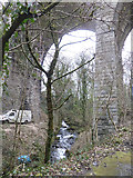 SX4975 : Viaduct and the River Wallabrook at Tavistock by Rupert Barnes