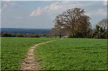 TQ1352 : Footpath across a field by Ian Capper