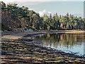 NJ0362 : Findhorn Bay by valenta