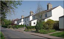 TL5646 : Symonds Lane by M H Evans