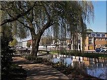 TL0506 : Hemel Hempstead Water Gardens by Chris Brown