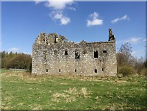 NS8384 : Torwood Castle by Euan Nelson