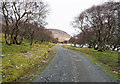 NM5638 : Estate road on south side of Loch Bà by Trevor Littlewood