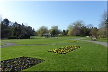 SE2955 : Flower beds in the Valley Gardens by DS Pugh