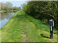 SJ8904 : Milepost along the Shropshire Union Canal by Mat Fascione