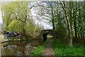 SJ8948 : Botany Bat Bridge no. 14, Caldon Canal by Tim Heaton