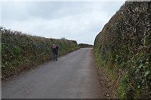 SX8157 : Lane to Ashprington Cross by N Chadwick