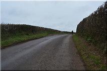SX8157 : A Devon lane by N Chadwick