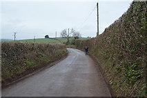 SX8157 : To Ashprington Cross by N Chadwick