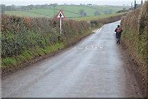 SX8157 : Approaching Ashprington Cross by N Chadwick