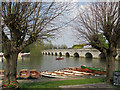 SP2054 : Stratford-upon-Avon: rowing boats and Clopton Bridge by John Sutton