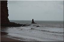 SX9574 : Shag Rock by N Chadwick