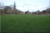 TQ2064 : Grassland by N Chadwick