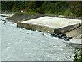 D2819 : Concrete Sea Defences, Carnlough Bay by David Dixon