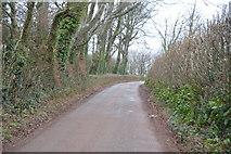 SX8058 : Quiet lane by N Chadwick