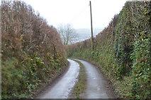 SX8059 : Quiet lane by N Chadwick