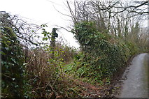 SX8059 : Footpath rejoins the road by N Chadwick