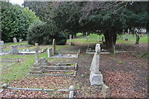 TR2157 : Graves, Church of St Vincent by N Chadwick