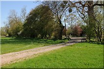 SO8451 : Access road to Temeside Cottage by Philip Halling