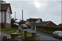 SX9574 : Off Windward Lane by N Chadwick
