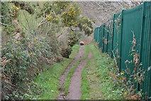 SX9675 : South West Coast Path by N Chadwick