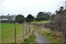 SX9575 : South West Coast Path by N Chadwick