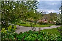 SX4268 : Cornwall : Cotehele House Gardens by Lewis Clarke