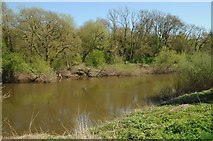 SO8452 : River Severn downstream from Diglis by Philip Halling