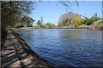 SO8453 : River Severn below Diglis Weir by Philip Halling