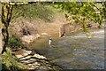 SO8453 : Fisherman below Diglis weir by Philip Halling