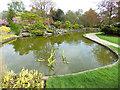 TQ4475 : Eltham Cemetery: fish pond by Stephen Craven