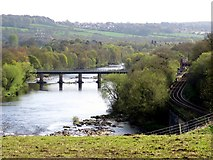 NZ1164 : Wylam Bridge from Wylam Wood Road by Andrew Curtis