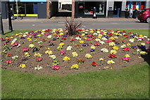 NS3321 : Gardens, Burns Statue Square, Ayr by Billy McCrorie