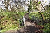 NS3421 : Footbridge on the River Ayr Walk by Billy McCrorie