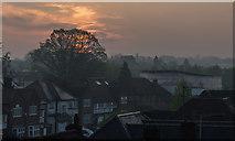 TQ2688 : Sunrise over Hampstead - April 2018 by The Carlisle Kid