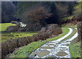 SO0060 : Track along the Wye valley by Andrew Hill