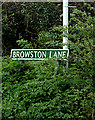 TG4901 : Browston Lane sign by Adrian Cable