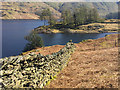 NY4712 : Drystone wall above Haweswater : Week 17