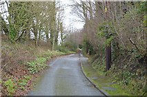 SX9575 : Old Teignmouth Rd by N Chadwick
