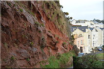 SX9676 : Red Sandstone cliff above Dawlish by N Chadwick